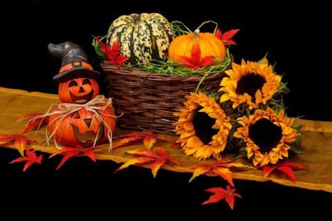 waste free halloween