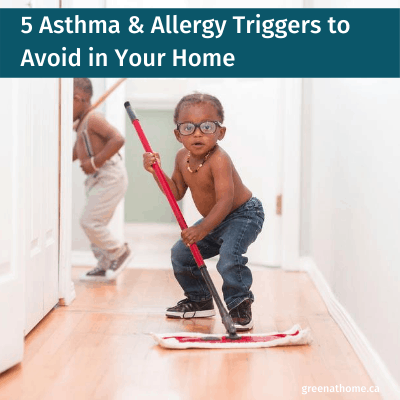 Asthma & Allergy Triggers