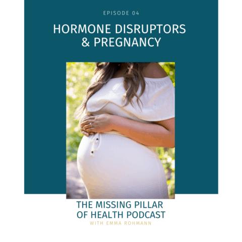 Hormone Disruptors & Pregnancy Cover Image
